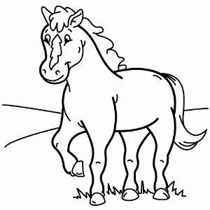 Dibujos de animales vertebrados para colorear   Animales vertebrados